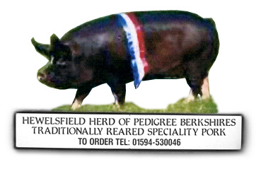 Pedigree Berkshire
